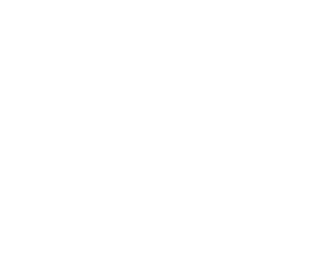 ff-home-logos-evms